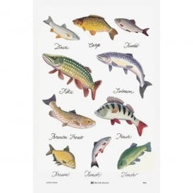 Samuel Lamont Fresh Water Fish Tea Towel