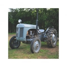 "Salmon Art Grey Vintage Tractor ""The Old Fergie"" Greeting Card"