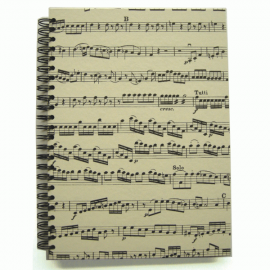 Music Gifts Company Musical Notes A5 Hardback Spiral Notebook